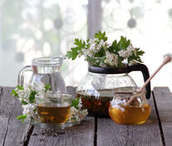 Green tea in a glass cup, honey and a branch of a blossoming haw Royalty Free Stock Photos