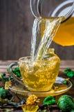 Green tea in glass mug Royalty Free Stock Photography