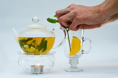 Green tea in glass teapot Royalty Free Stock Image