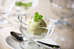 Green tea ice cream. Ready to serve Royalty Free Stock Images