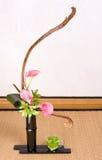 Green tea and ikebana Stock Photo