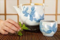 Green tea from Japan Stock Photos