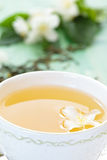 Green tea and jasmine. Stock Photos