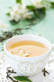 Green tea and jasmine. Royalty Free Stock Photo