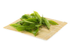 Green tea leaf isolated on white background Royalty Free Stock Photos