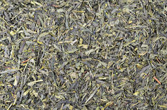 Green Tea Leaflets Royalty Free Stock Images