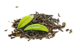 Green tea and leaves Royalty Free Stock Photography