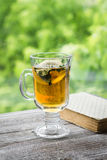 Green tea with lemon and mint and a book Royalty Free Stock Photos