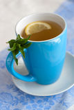 Green tea with lemon and mint Stock Image