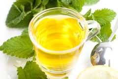 Green tea with melissa leaf on slice of lemon on white background Royalty Free Stock Images