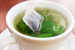Green tea with mint Royalty Free Stock Images