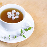 Green tea with mint Stock Image