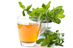 Green tea with mint Stock Photography