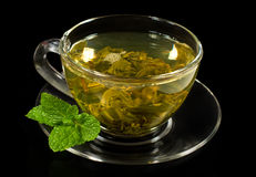 Green tea with mint Stock Photos