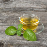 Green  tea with mint  on cup Stock Photography