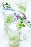 Green tea with mint, ginger root and a lemon Stock Image