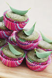 Green tea muffins Royalty Free Stock Photos