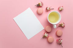 Green tea and pastel french macarons cakes on pink background. Dessert in a garden. Flat lay. Free text space. Green tea and pastel french macarons cakes on stock images