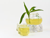 Green Tea pot, glasses and bamboo Royalty Free Stock Image