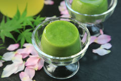 Green tea pudding. It is a pudding of the powdered green tea taste stock images