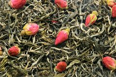 Green tea with rose. Leaves of green tea aromatized with rose buds Stock Image