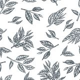 Green tea seamless vector pattern. Sketch hand drawn illustration of leaves and branches. vector illustration