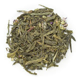 Green tea Sencha Kombucha Royalty Free Stock Images