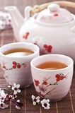 Green tea set. With teapot and cups Royalty Free Stock Photography