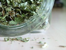 Green tea spilling out. From a glass jar Stock Images