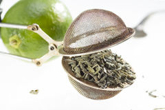 Green tea in the strainer. Royalty Free Stock Images