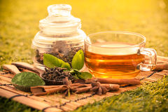Green tea. In summer,healthy drink stock photo