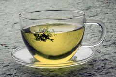 Green tea. On green surface Royalty Free Stock Photography