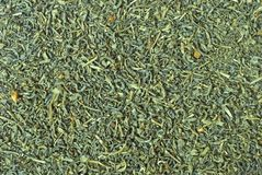 Green tea texture Royalty Free Stock Photos