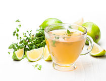 Green  tea with  thyme and lime on white background Stock Images