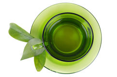 Green tea in transparent cup isolated on white Royalty Free Stock Image