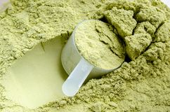 Green Tea Whey Protein royalty free stock photography