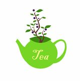 Green teapot with inscription on the side and a blueberry Bush growing out of it. The symbol of the green tea with blueberries. il Royalty Free Stock Photos