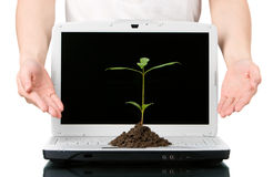 Green technology offered Stock Images