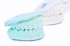 Green teeth, model Royalty Free Stock Photos