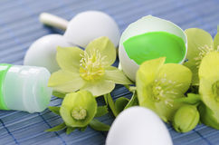 Green tempera paint tube and hellebore and egg shells in a Easter decoration. On a blue pad royalty free stock photography