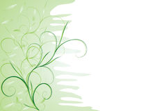 Green tenderness. Abstract floral background with place for your text Royalty Free Stock Images