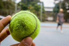 A green tennis ball on a sunnyday stock image