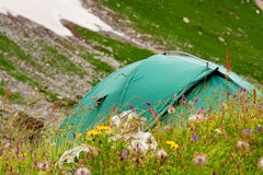 Green tent Stock Image