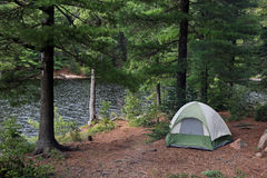 Green Tent beside Algonquin Lake Stock Images