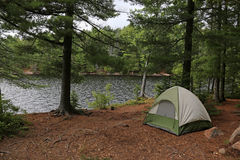 Green Tent in Algonquin Park Royalty Free Stock Image