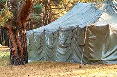 Green tent, camping, camping, woods Stock Image