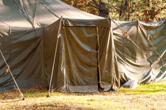 Green tent, camping, camping, woods Royalty Free Stock Images