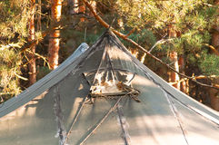 Green tent, camping, camping, woods Royalty Free Stock Photos