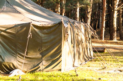 Green tent, camping, camping, woods Royalty Free Stock Photo
