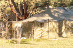 Green tent, camping, camping, woods Stock Images